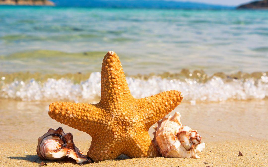 Evita las otitis de verano con tapones para los oídos